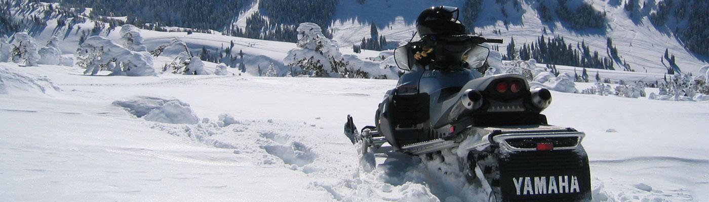 запчасти для снегоходов Yamaha